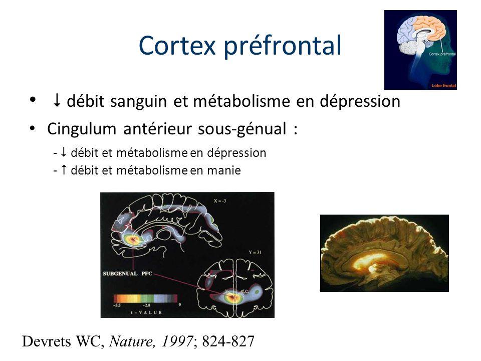 Cortex préfrontal  débit sanguin et métabolisme en dépression