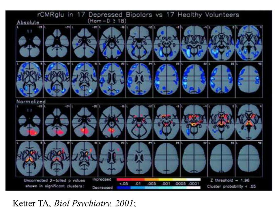 Ketter TA, Biol Psychiatry, 2001; 97-109