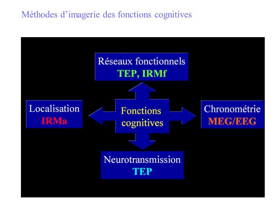Méthodes d'imagerie des fonctions cognitives