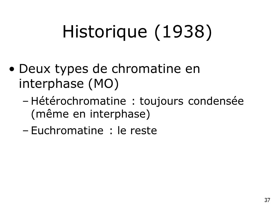 Historique (1938) Deux types de chromatine en interphase (MO)
