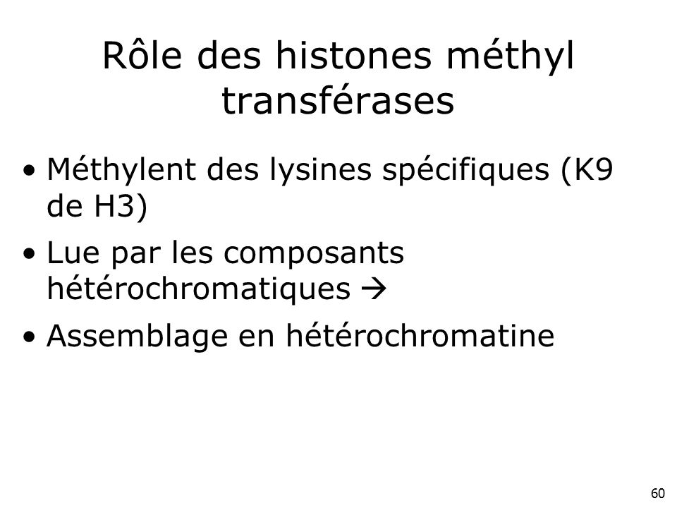 Rôle des histones méthyl transférases