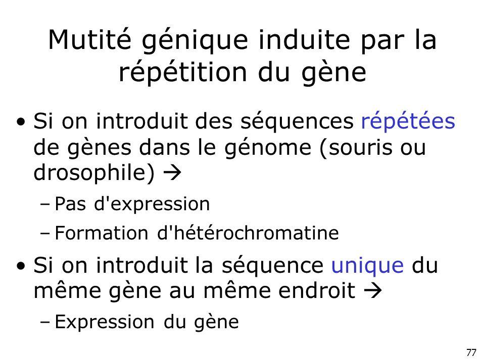 Mutité génique induite par la répétition du gène