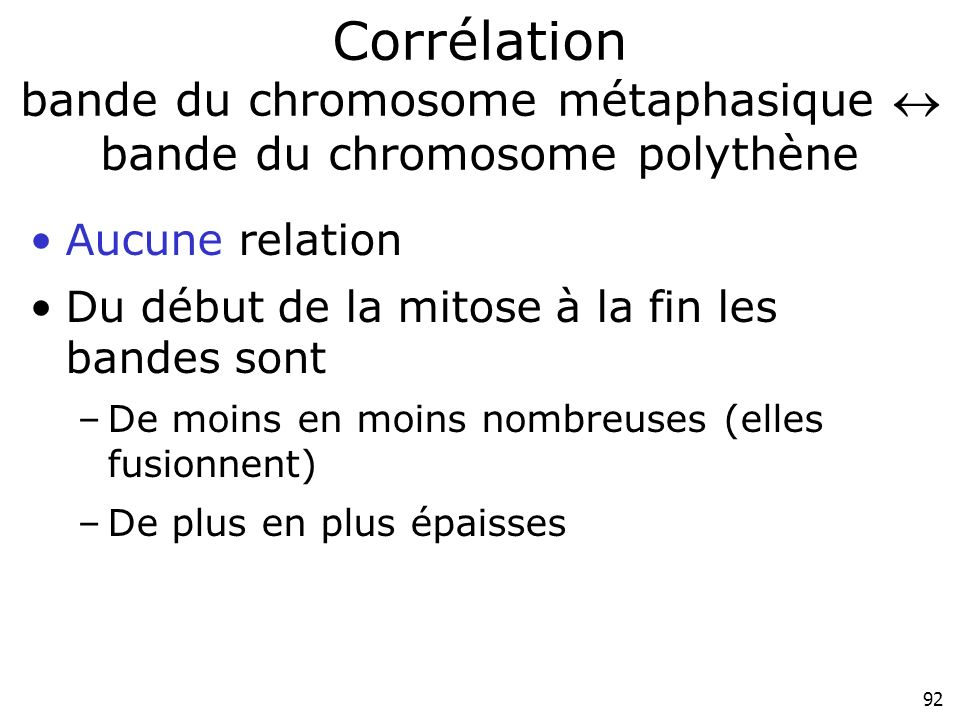 Corrélation bande du chromosome métaphasique  bande du chromosome polythène