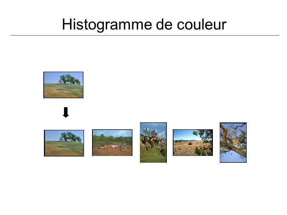 Histogramme de couleur