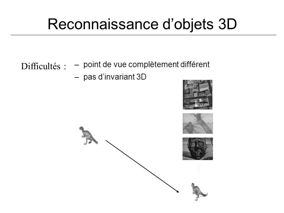 Reconnaissance d'objets 3D