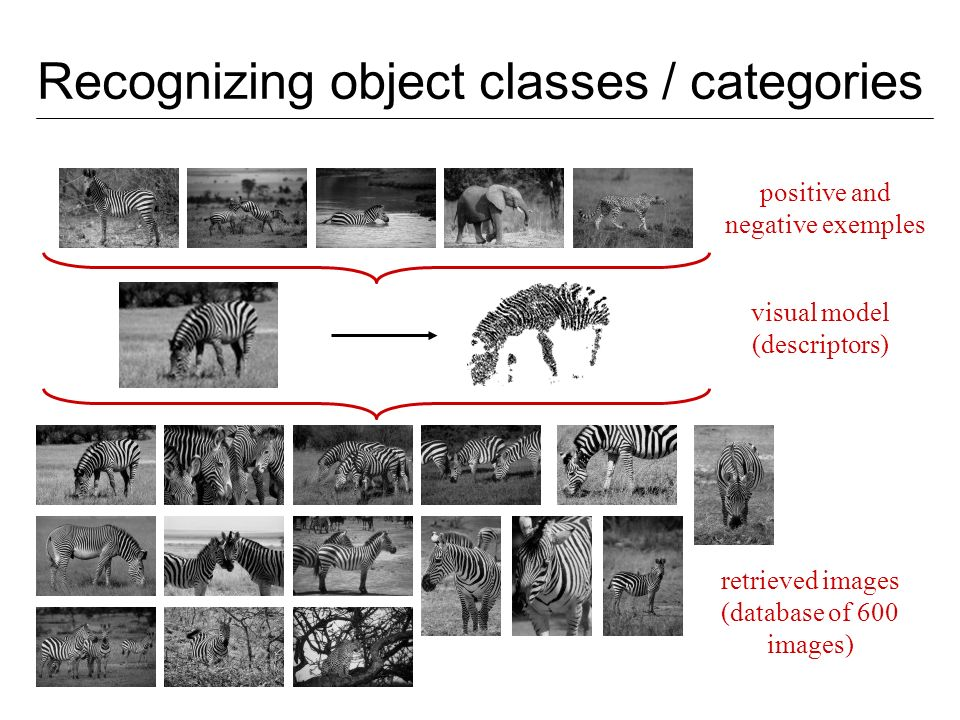 Recognizing object classes / categories