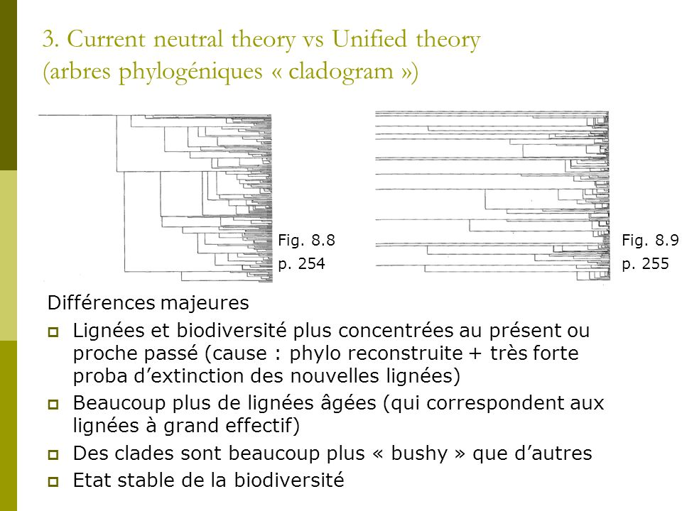 3. Current neutral theory vs Unified theory (arbres phylogéniques « cladogram »)