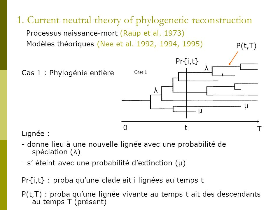 1. Current neutral theory of phylogenetic reconstruction