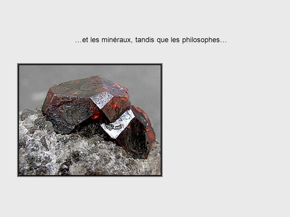 …et les minéraux, tandis que les philosophes…