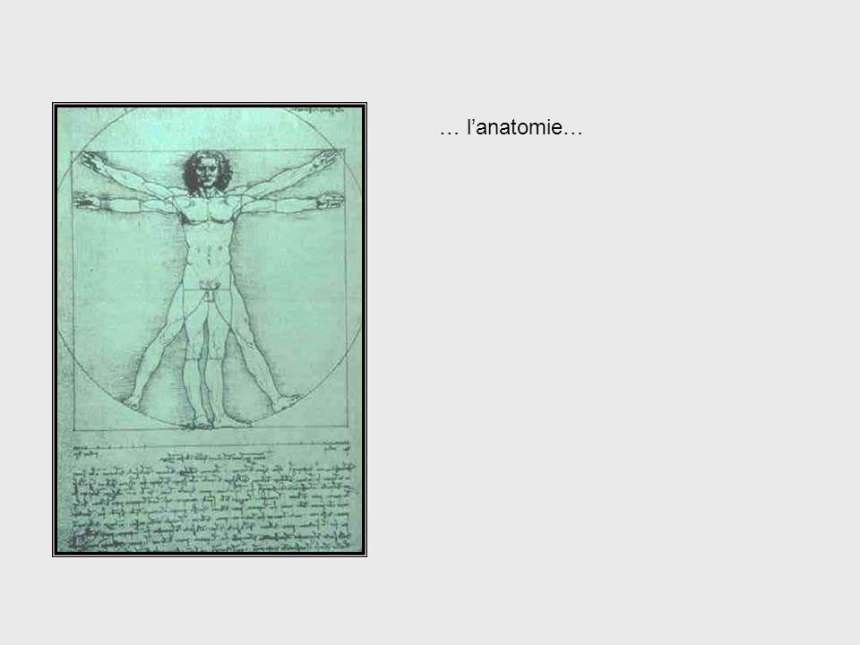 Da Vinci, cont. – Anatomy … l'anatomie… . . . anatomy . . .