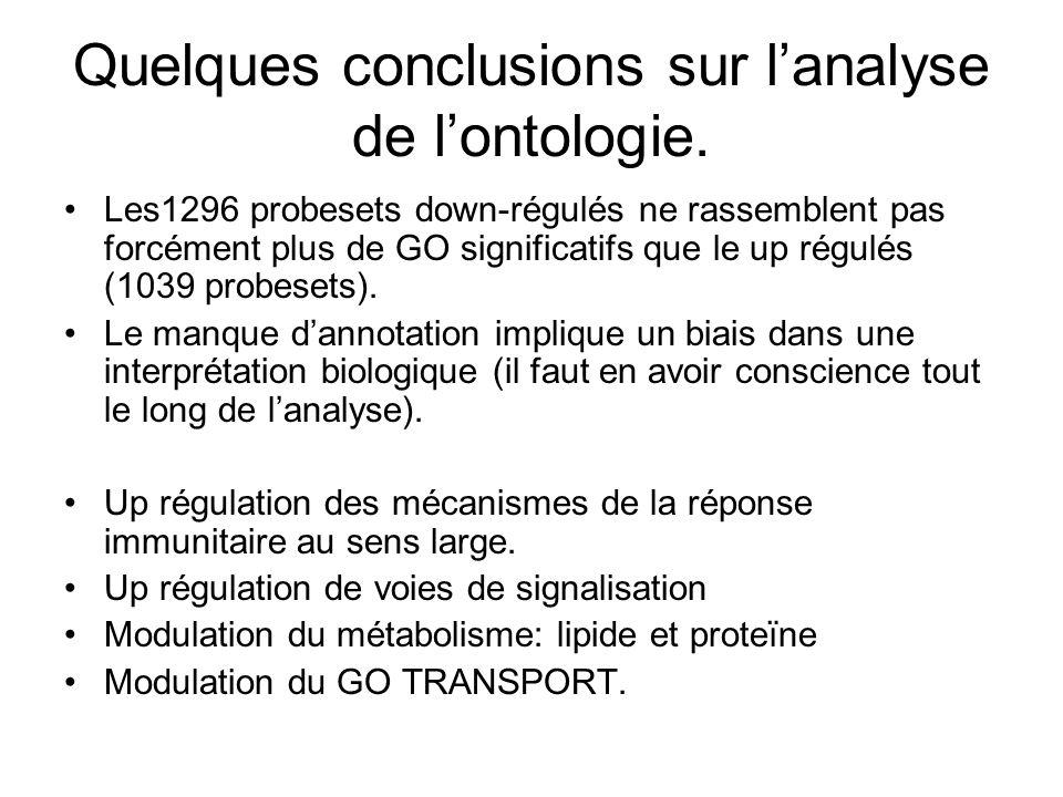 Quelques conclusions sur l'analyse de l'ontologie.