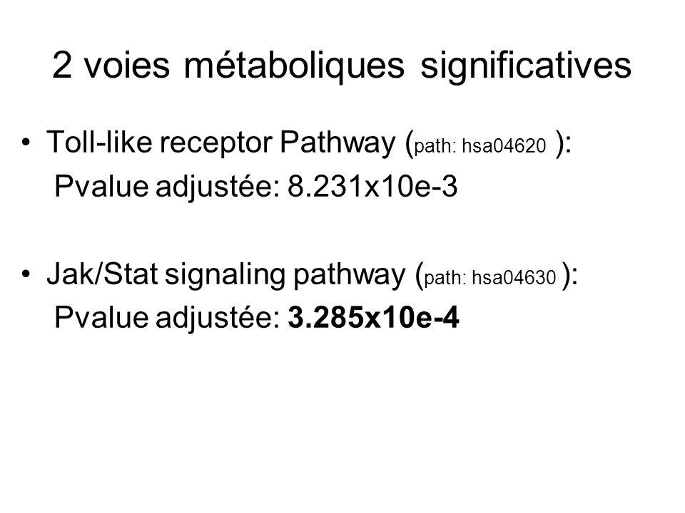 2 voies métaboliques significatives