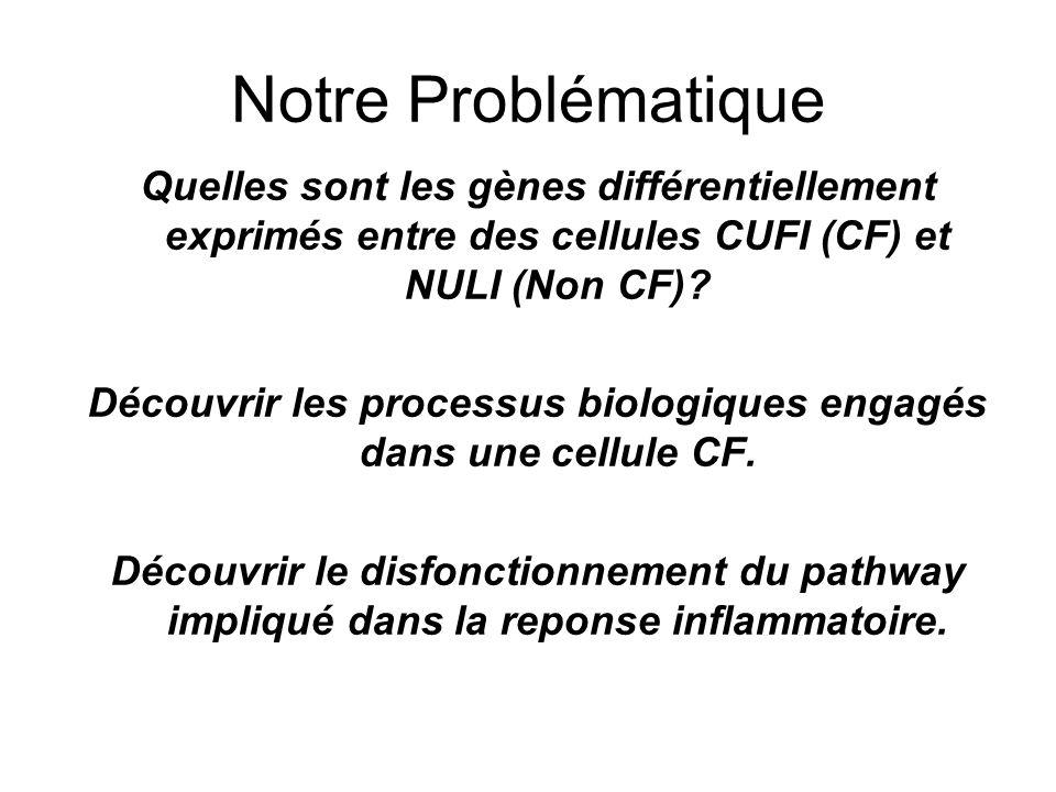 Découvrir les processus biologiques engagés dans une cellule CF.
