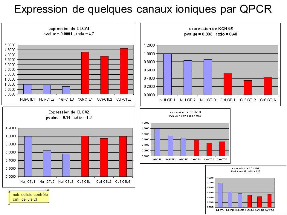 Expression de quelques canaux ioniques par QPCR