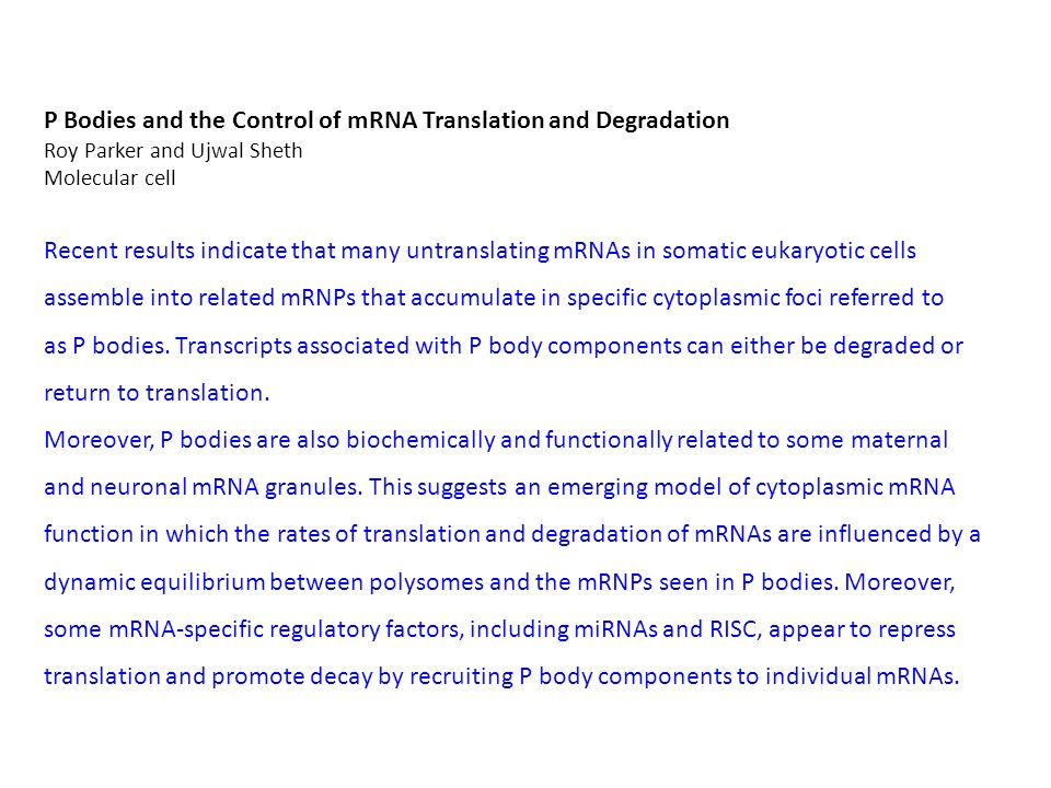 P Bodies and the Control of mRNA Translation and Degradation