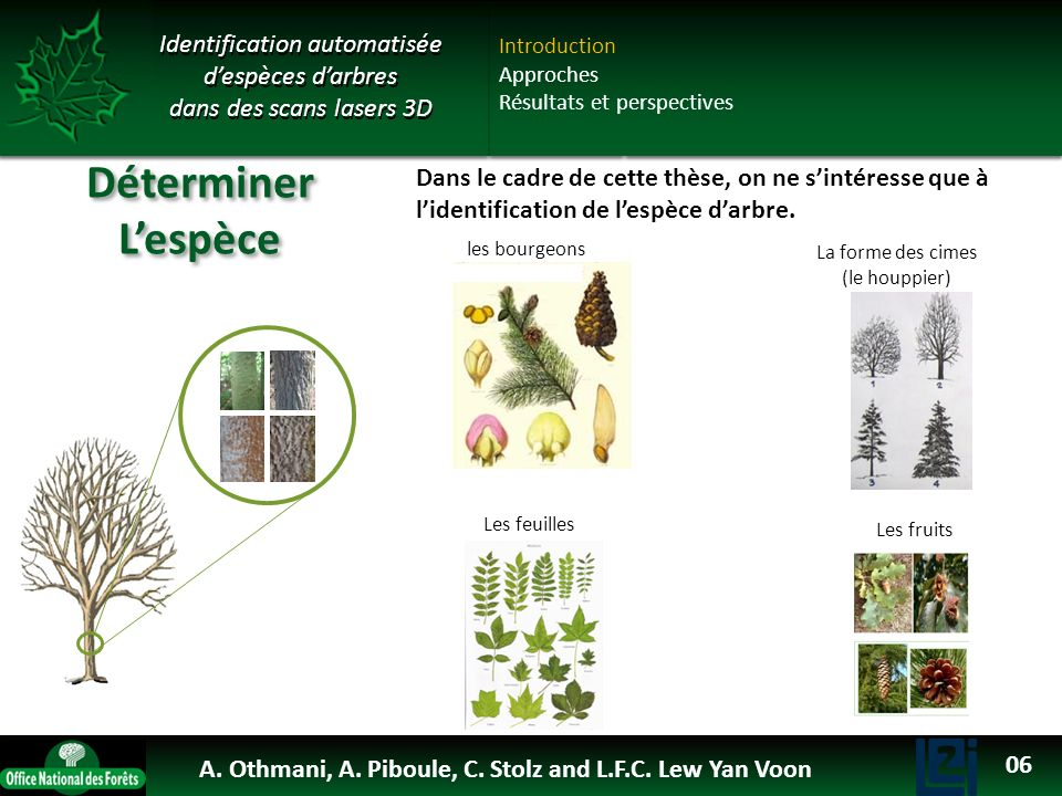 Déterminer L'espèce OTHMANI Ahlem 2013