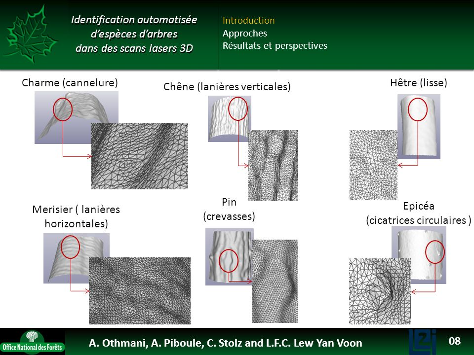 OTHMANI Ahlem 2013 Identification automatisée d'espèces d'arbres dans des scans lasers 3D. Introduction.