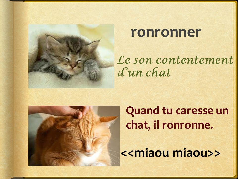 ronronner <<miaou miaou>>