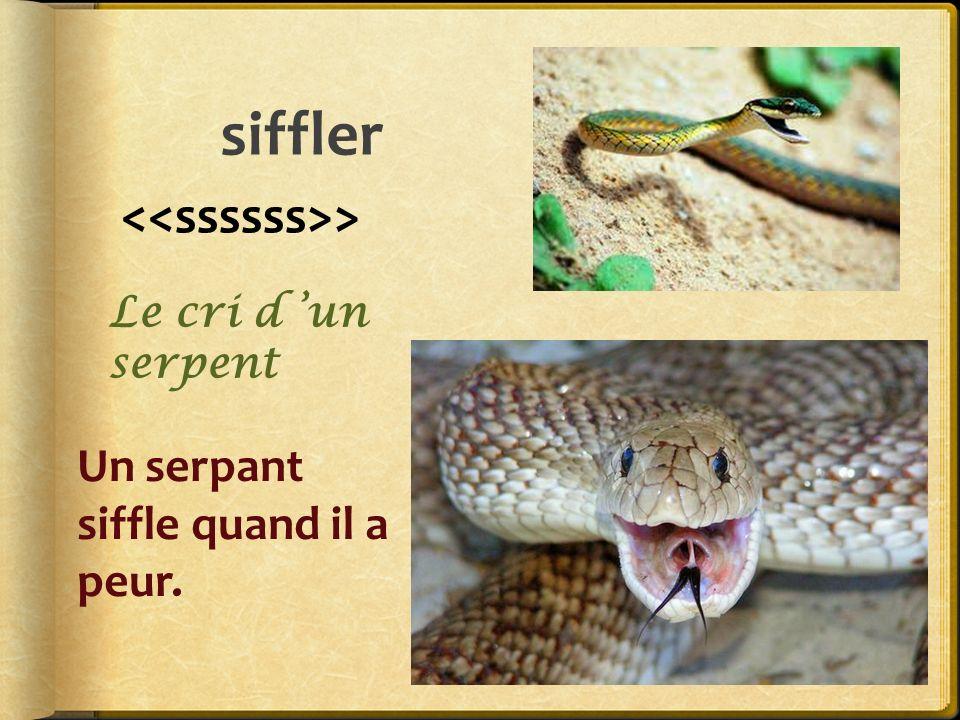 siffler <<ssssss>> Un serpant siffle quand il a peur.
