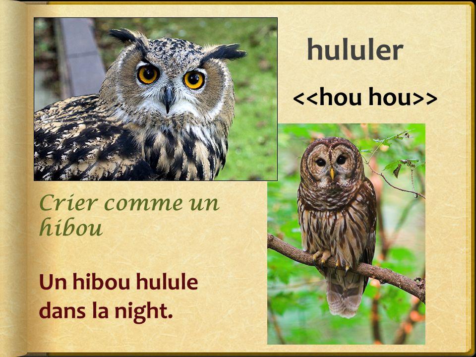 hululer <<hou hou>> Un hibou hulule dans la night.