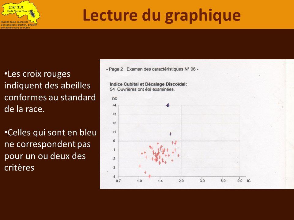 Lecture du graphique Les croix rouges indiquent des abeilles conformes au standard de la race.