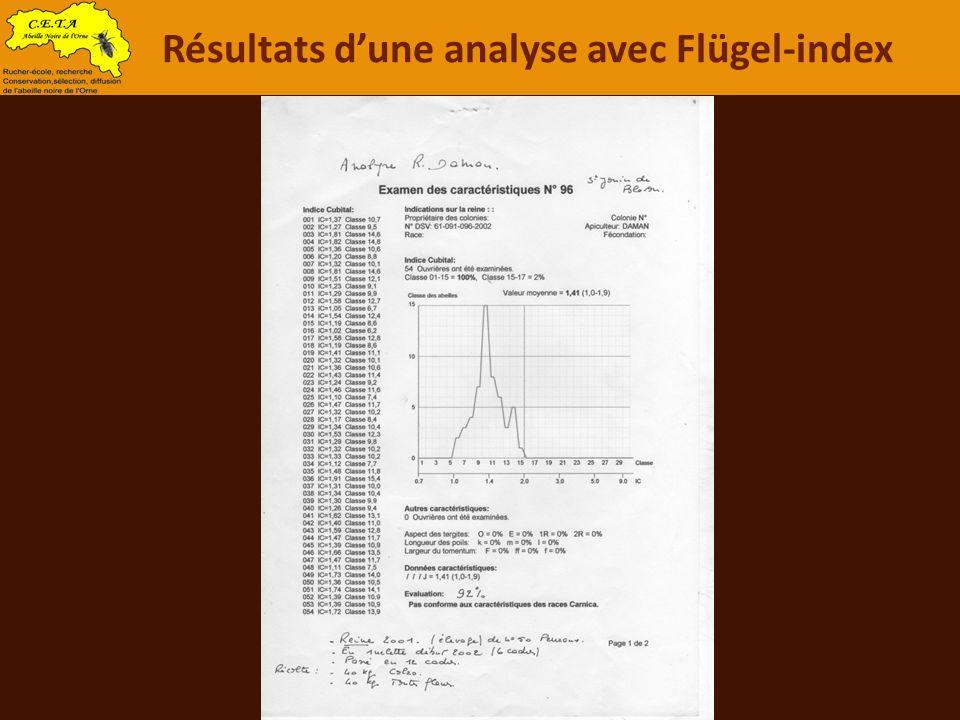 Résultats d'une analyse avec Flügel-index