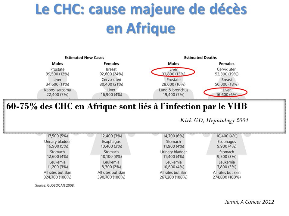 Le CHC: cause majeure de décès en Afrique