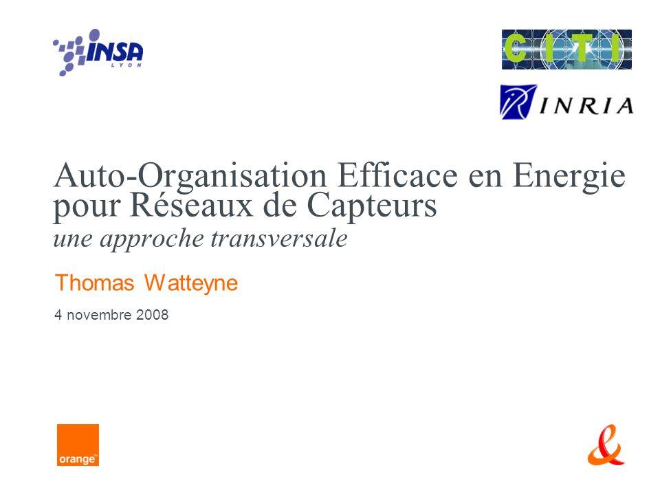 Auto-Organisation Efficace en Energie pour Réseaux de Capteurs une approche transversale