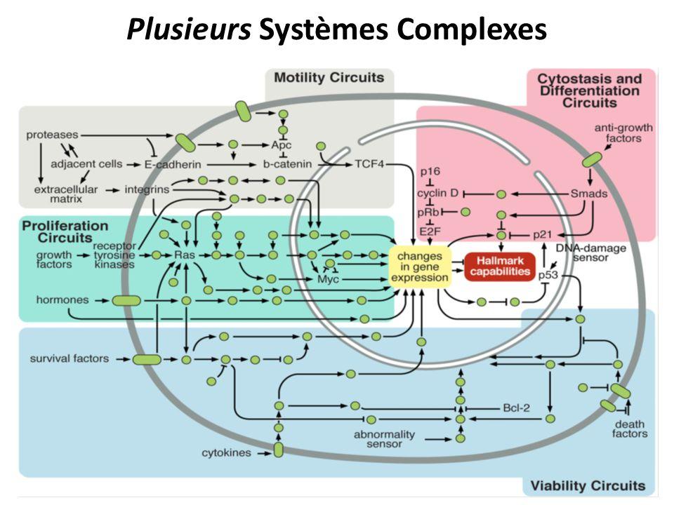 Plusieurs Systèmes Complexes