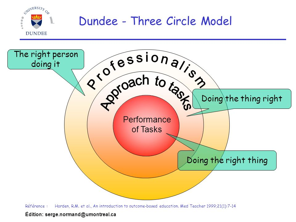 Professionalism Dundee - Three Circle Model Approach to tasks