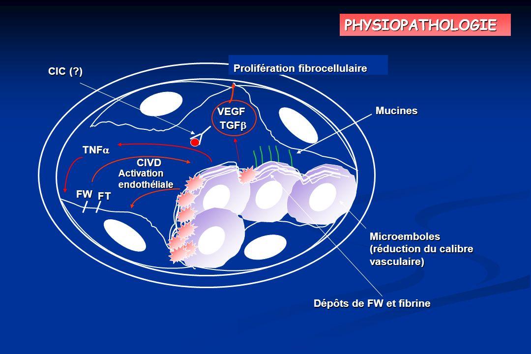 PHYSIOPATHOLOGIE Prolifération fibrocellulaire CIC ( ) VEGF Mucines