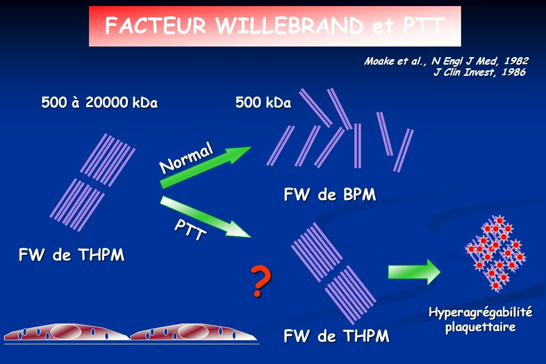 FACTEUR WILLEBRAND et PTT