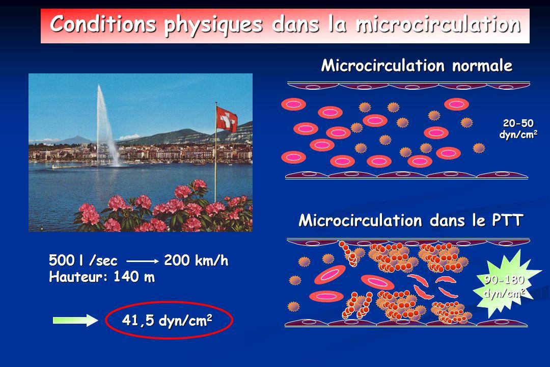 Conditions physiques dans la microcirculation