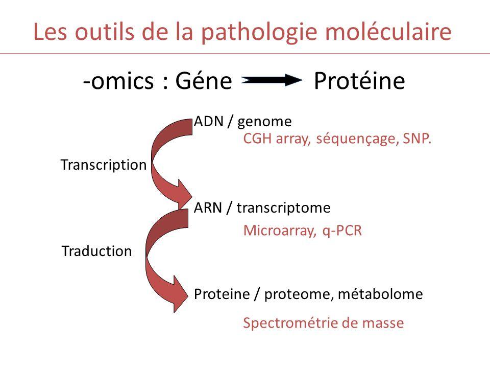 Les outils de la pathologie moléculaire -omics : Géne Protéine