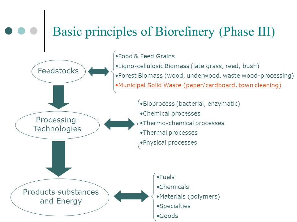 Basic principles of Biorefinery (Phase III)