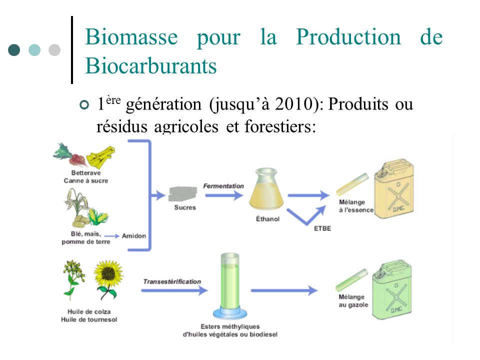 Biomasse pour la Production de Biocarburants