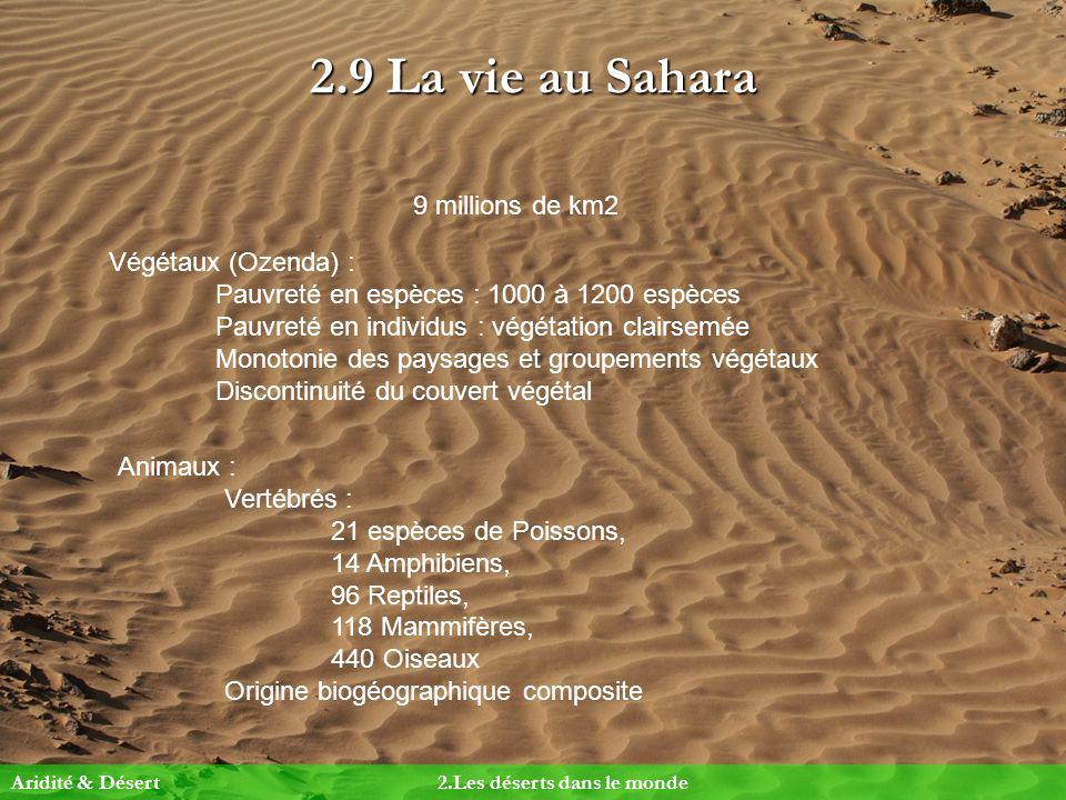 2.9 La vie au Sahara 9 millions de km2 Végétaux (Ozenda) :