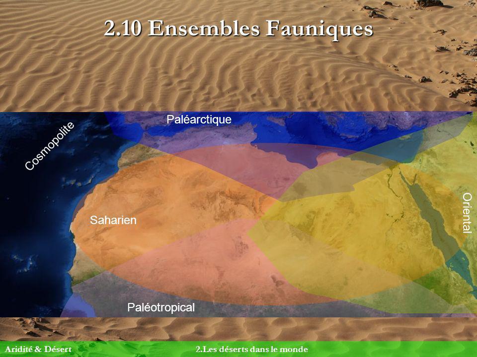 2.10 Ensembles Fauniques Paléarctique Cosmopolite Oriental Saharien