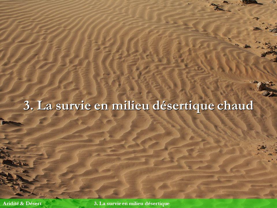 3. La survie en milieu désertique chaud