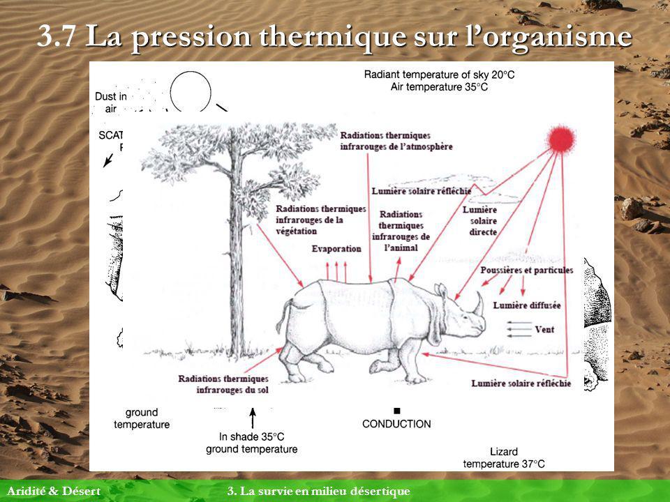 3.7 La pression thermique sur l'organisme