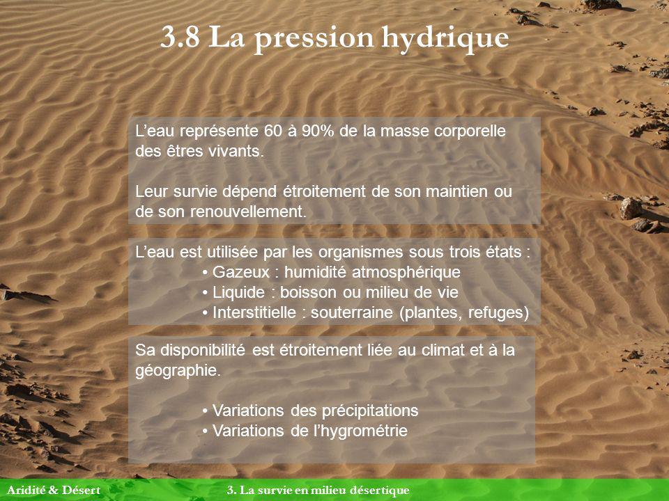 3.8 La pression hydrique L'eau représente 60 à 90% de la masse corporelle des êtres vivants.
