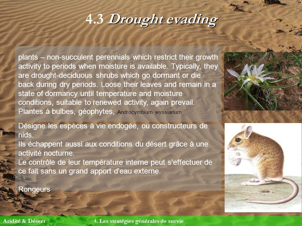 4.3 Drought evading