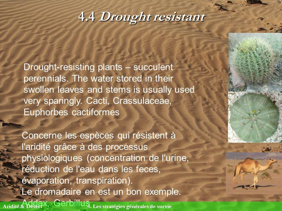 4.4 Drought resistant