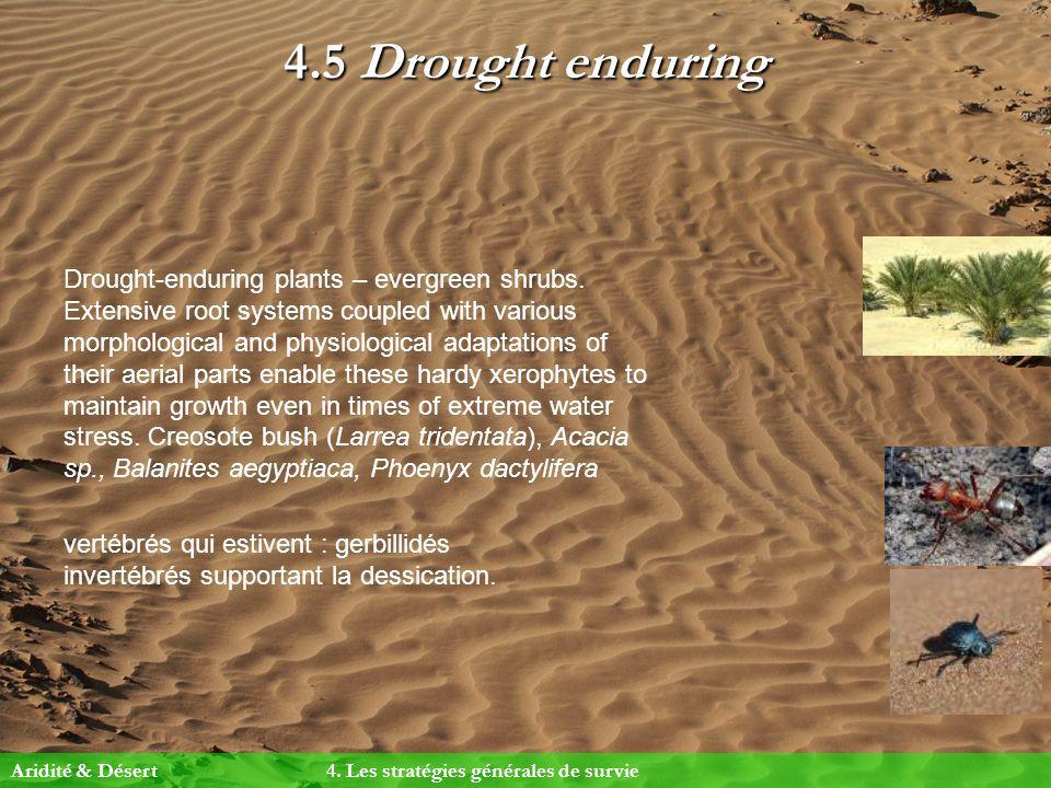 4.5 Drought enduring