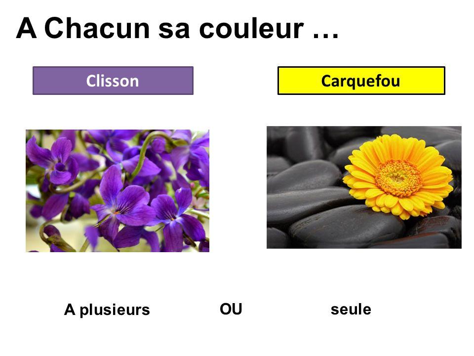 A Chacun sa couleur … Clisson Carquefou A plusieurs OU seule