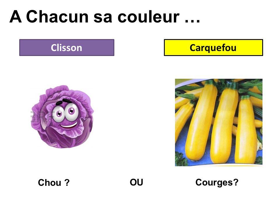 A Chacun sa couleur … Clisson Carquefou Chou OU Courges