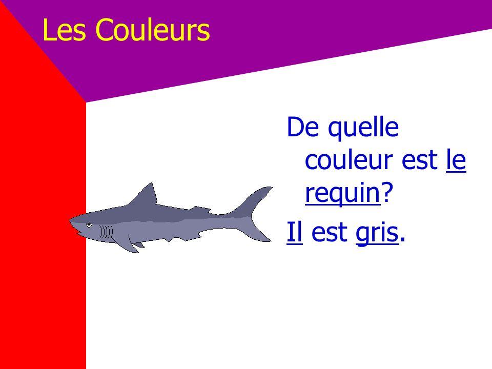 Les Couleurs De quelle couleur est le requin Il est gris.