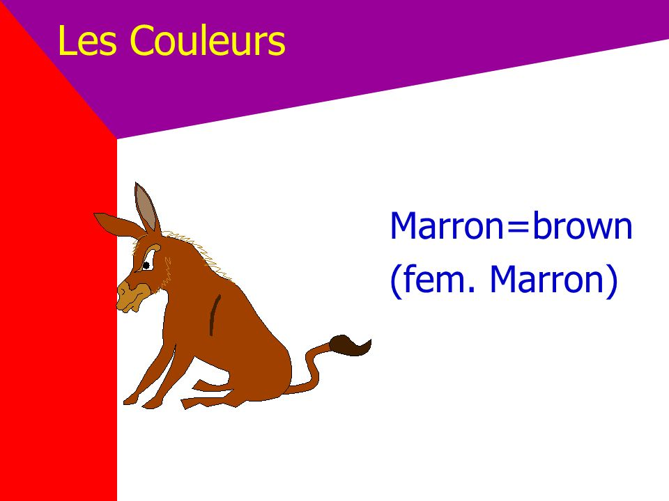 Les Couleurs Marron=brown (fem. Marron)