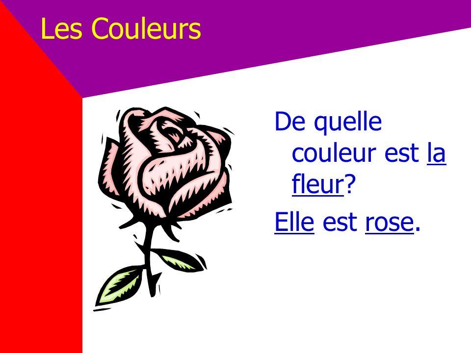 Les Couleurs De quelle couleur est la fleur Elle est rose.