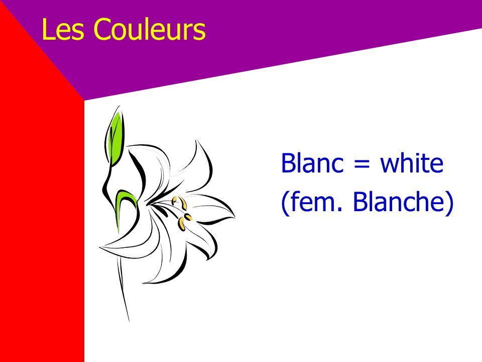 Les Couleurs Blanc = white (fem. Blanche)